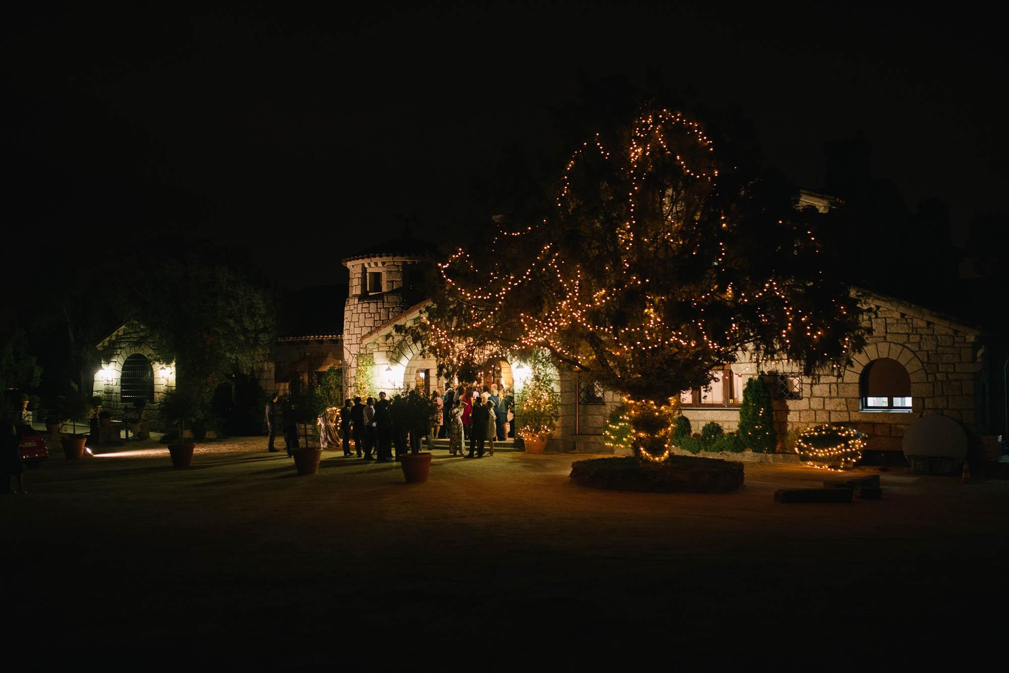 Un arbol con luces por la noche y de fondo un edificio de piedra